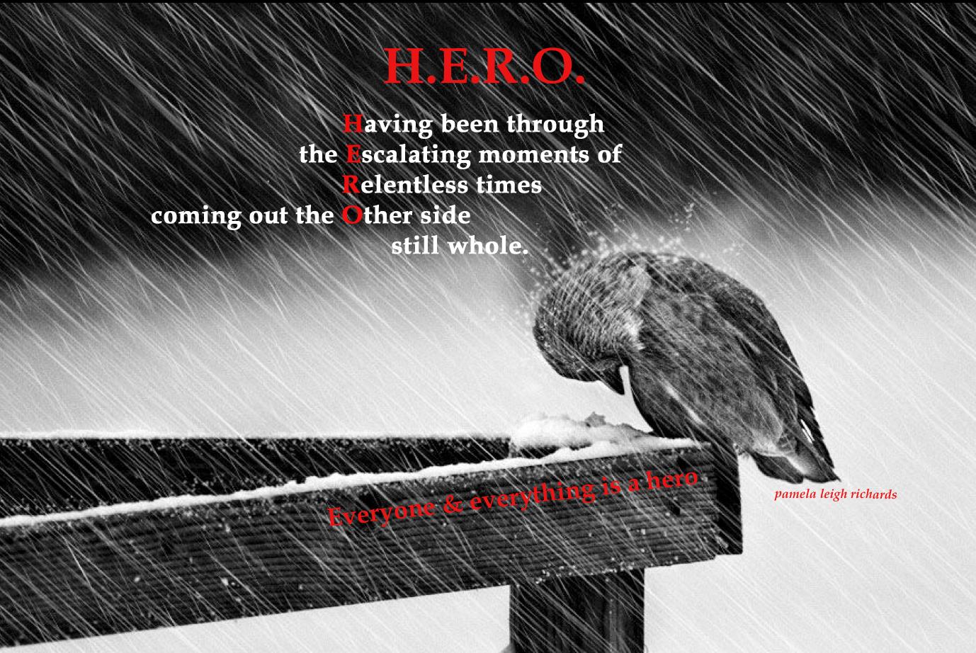 Hero Quotes Pamela Leigh Richards » Bird Rain Hero Pamela Quote