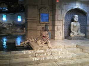 Tiger Temple Water Sacred Pamela Quote