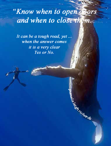 advice from the ocean quote