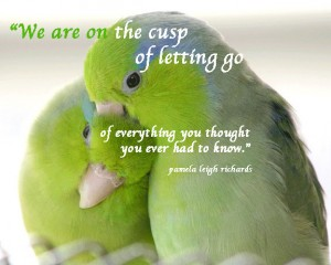 Birds Green Pamela quote