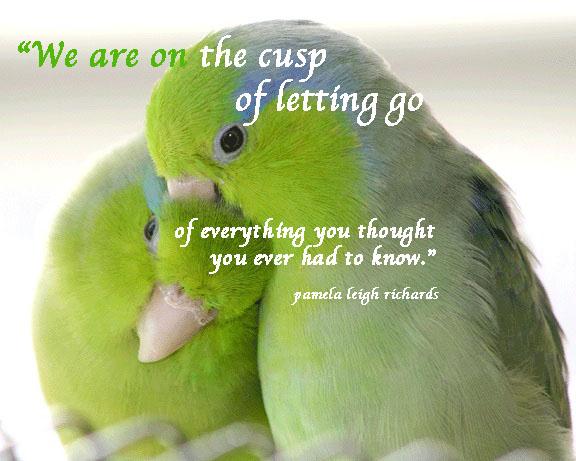 Pamela Leigh Richards Birds Green Pamela Quote