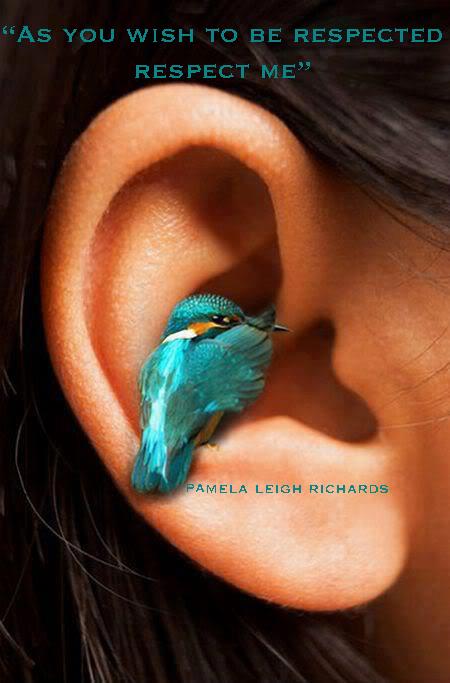 Pamela Leigh Richards » Hummingbird Ear Pamela Quote 9