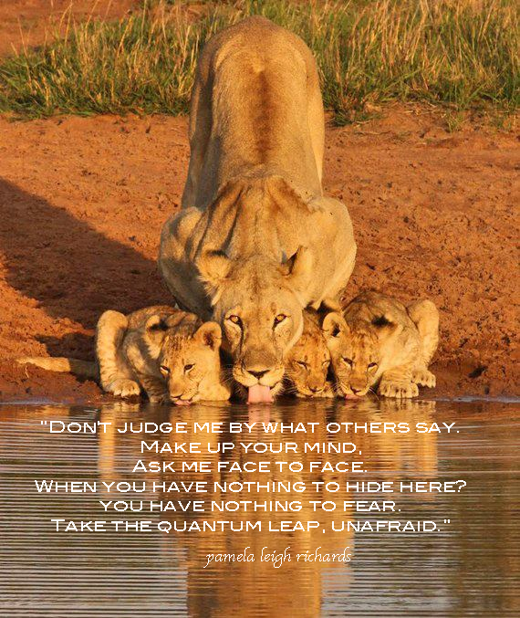 Lioness quotes women - photo#27