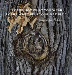 Owl Tree Nature pamela quote 4