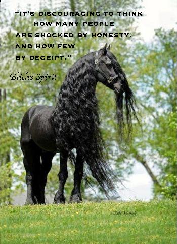 Pamela Leigh Richards 187 Black Beauty Horse Quote Copy