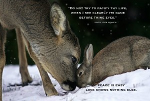 Deer Rabbit Love copy