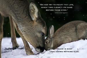 Deer Rabbit Love copy