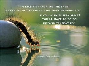 leggy creature Pamela quote