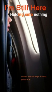 Boy looking out window plane pamela quote