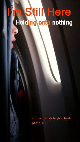 Pamela Leigh Richards Boy Looking Out Window Plane Pamela Quote