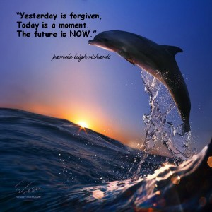 Dolphin Sunset Pamela quote