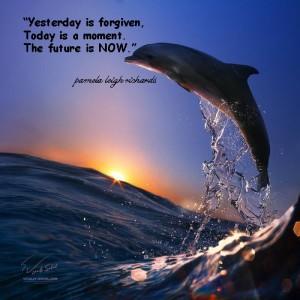 Dolphin Sunset Pamela quote