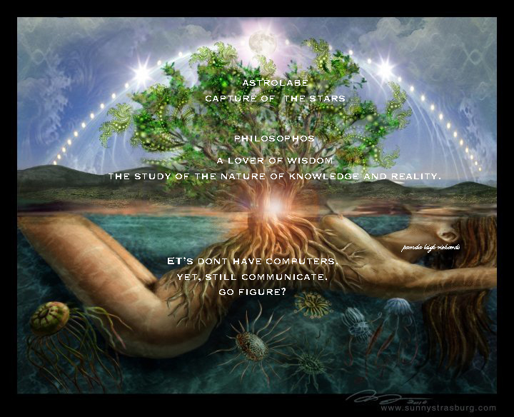 Pamela Leigh Richards Lady Tree Of Life Pamela Quote Fascinating Tree Of Life Quote