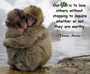 Quote Monkeys Loving hugging