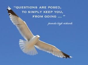 The Dove White Pamela quote