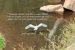 Pamela quote white bird Bill photo river