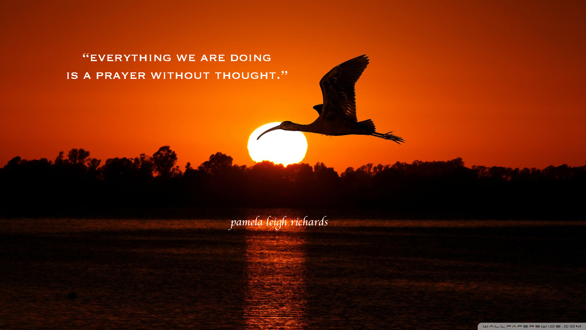 Bird Flying Sunset Pamela Quote