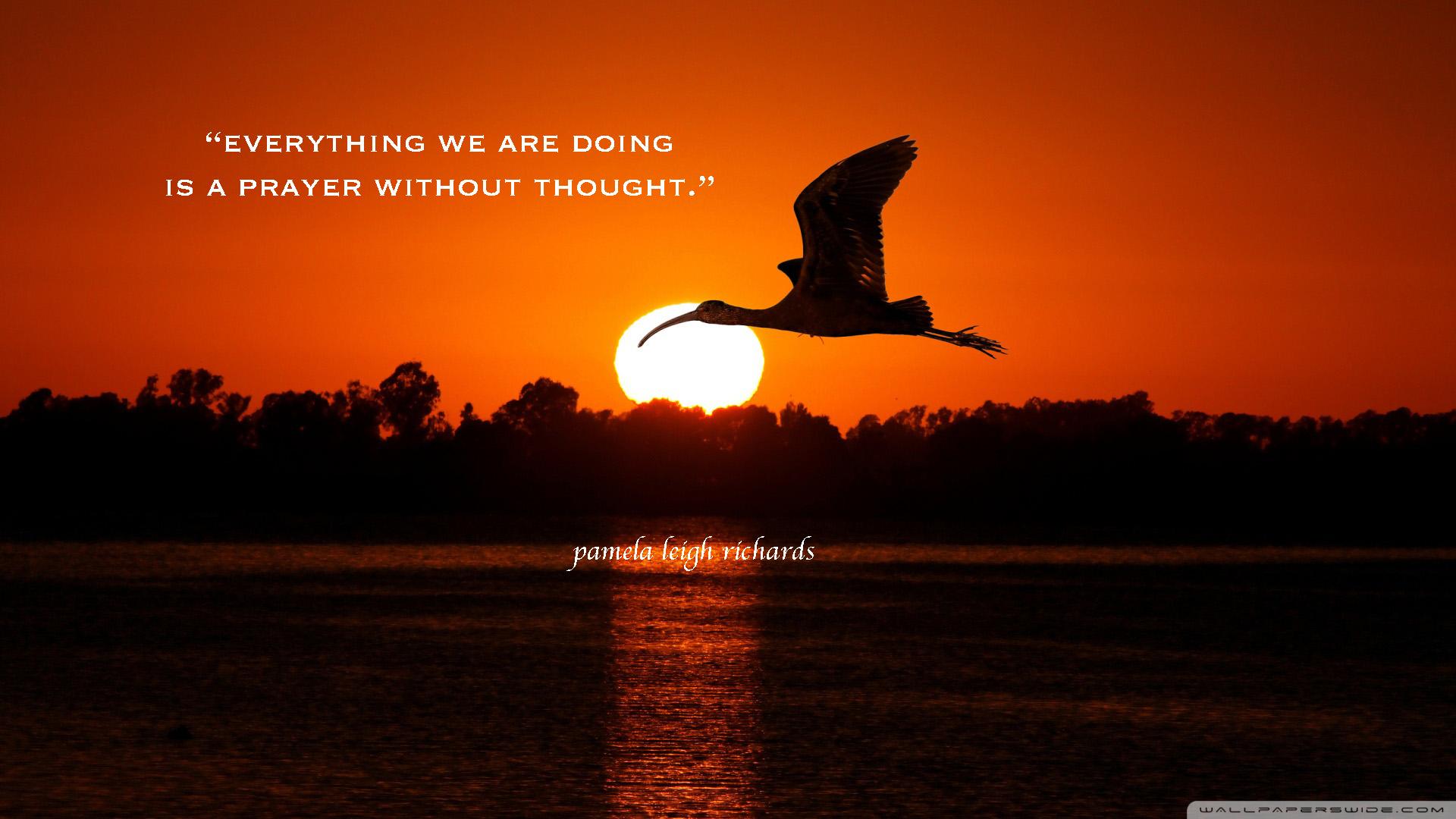 Pamela Leigh Richards » Bird Flying Sunset Pamela Quote