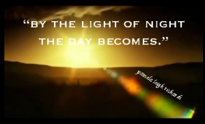 Pamela quote - by the light of night