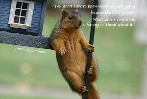Pamela quote squirrel lean house