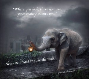 elephant walklight pamela quote copy