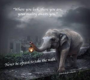 elephant walklight pamela quote copy