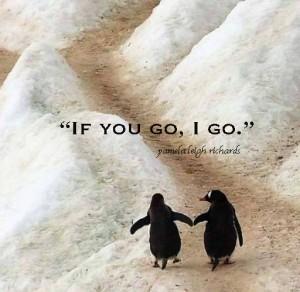 penguins pamela quote