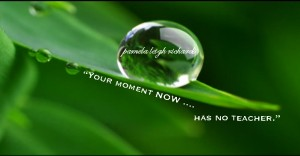 Pamela quote green water droplet