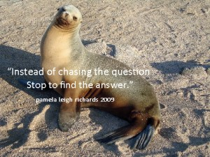 Seal love look.pamela quote