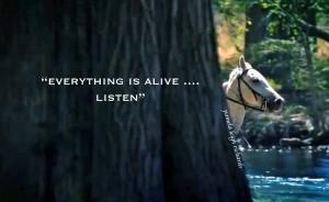 Horse Tree Listen pamela quote