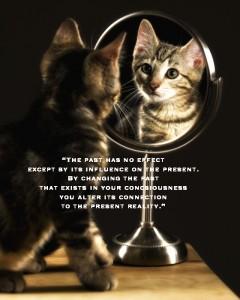 kittiemirror pamela quote
