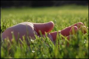 Hand Grass
