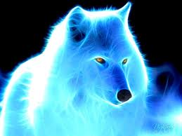 Wolf beautiful