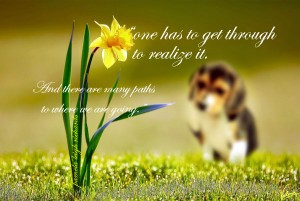 Puppy Flower Pamela quote
