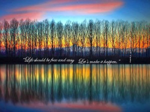 reflecting rainbow trees pamela quote
