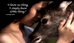 Lady love deer pamela quote