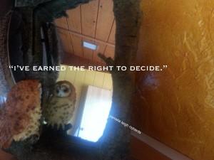 Pamela owl right to decide mirror quote