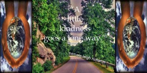 Pamela quote Kindness 2014