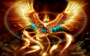 Phoenix-Ash-Beautiful-Burn-Colorful-Fire-Rainbow-1200x1920