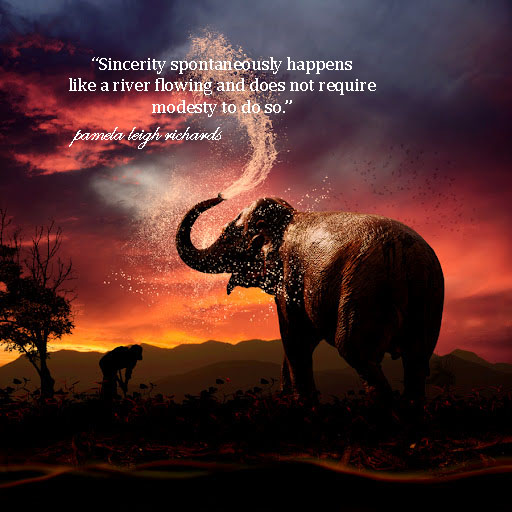 Elephant Quotes New Pamela Leigh Richards Elephant Sunset Splash Pamela Quote