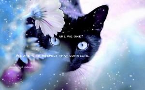 Pamela quote Cat beautiful Eyes