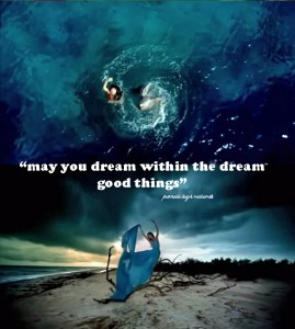 Pamela quote collage lady blue dolphin dream