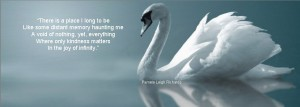 White Swan reflection pamela quote