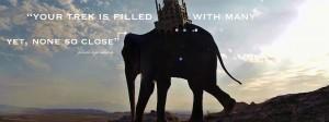 Pamela quote elephant leopard