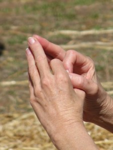 Pamela vesica Pisces Fingers