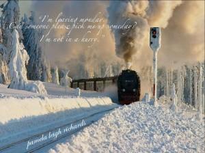 SnowTrain pamela quote 1