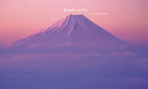 Purple mountain pamela simplicity