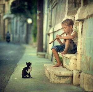 Steven Krohn boy flute kitten