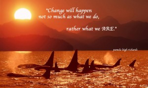 Whales Sun Ocean Pamela Quote