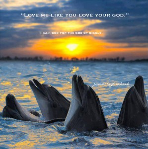 Dolphins Sun Ocean pamela quote giggle
